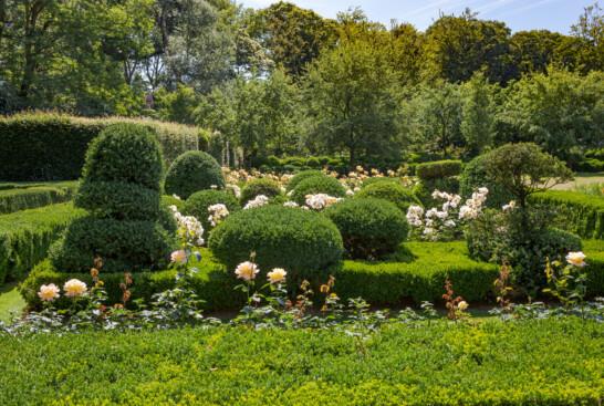 Garden Jacques Wirtz